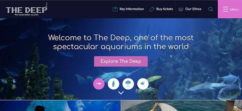The Deep Sea Aquarium Hull